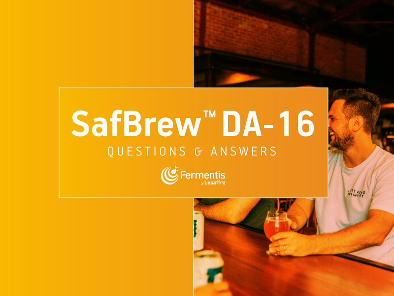 Question & Answers about SafBrew DA-16